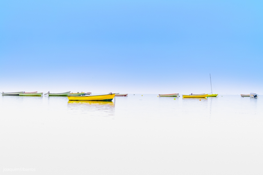 boats-2015-low-1