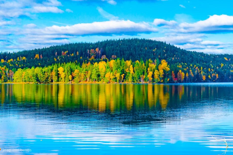 lake-lygnern-2015-low-1-3
